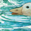 εικονογράφηση παιδικού βιβλίου, ακουαρέλλα